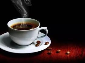 2019年的咖啡之旅